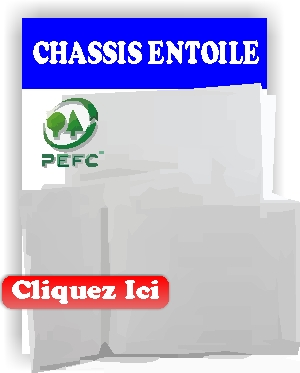 CHASSIS ENTLOILE 3D